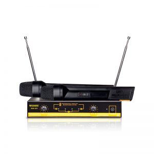 Set 2 microfoane wireless cu receiver Weisre WM-06V-0